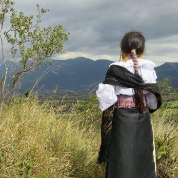Auf dem Weg nach Otavalo die Suche nach dem besonderen Meerschweinchen…